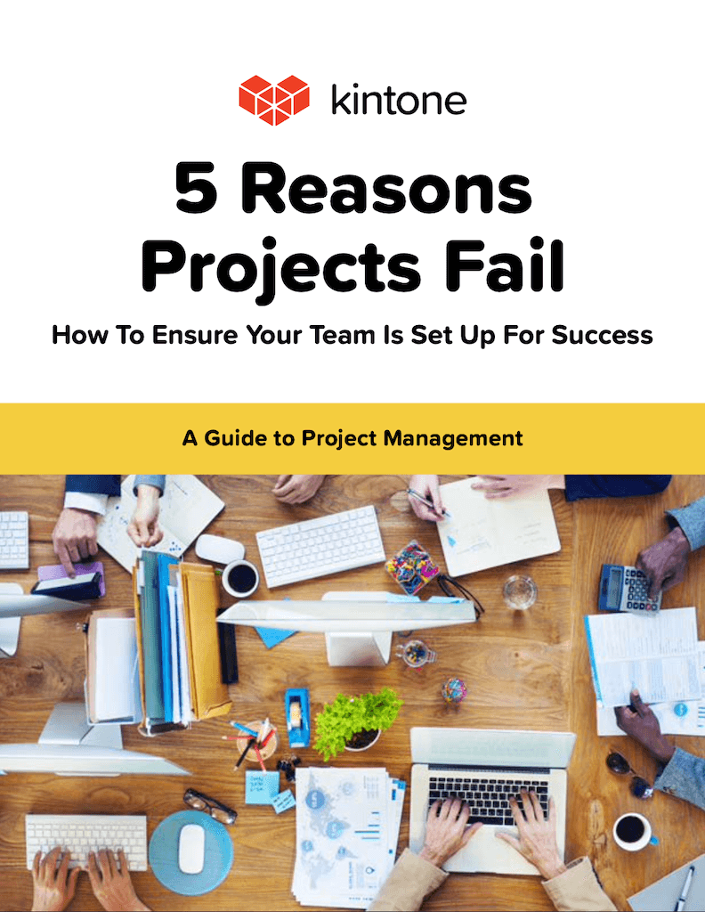 5 reasons projects fail cover