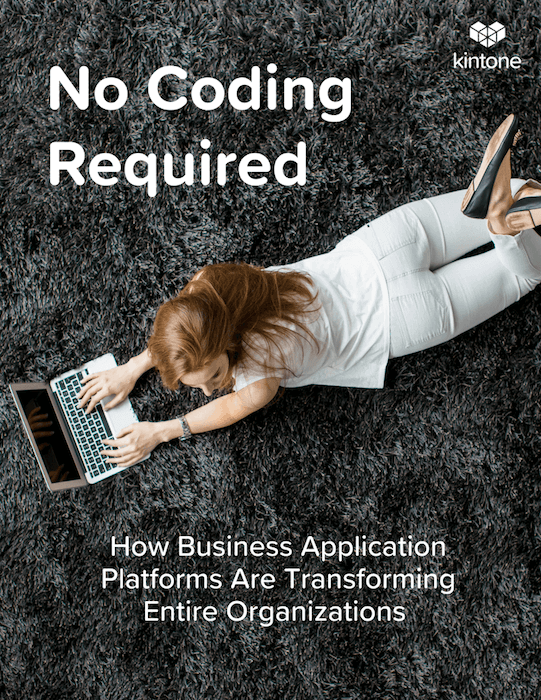 No-Coding Required ebook cover.png