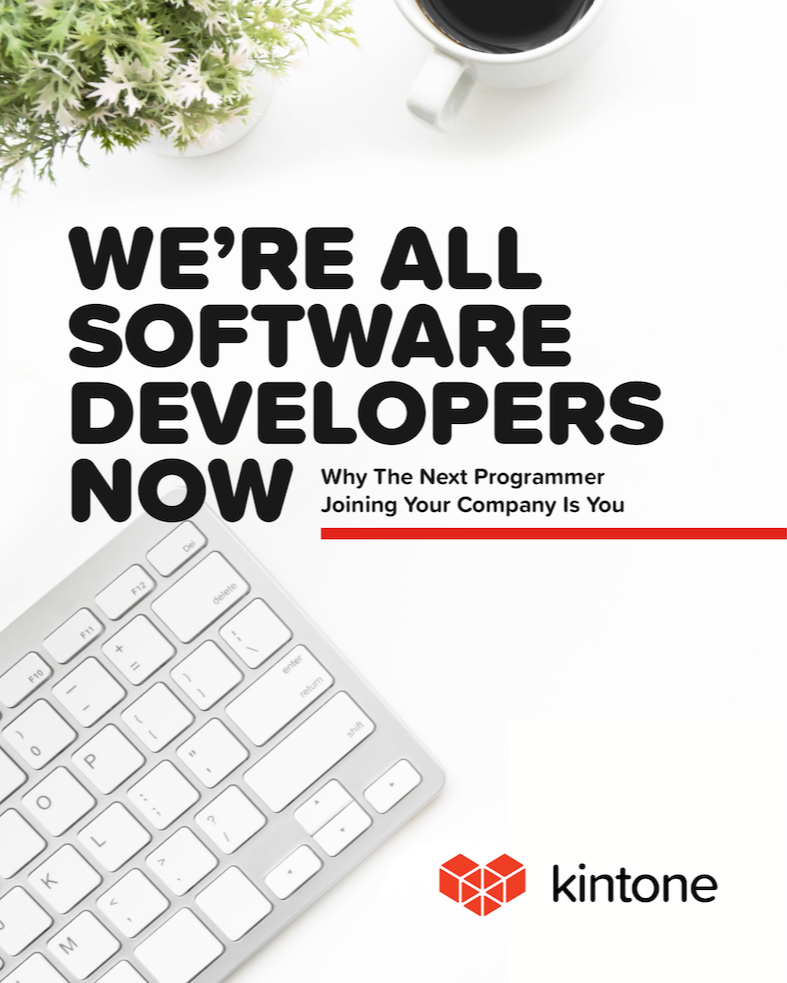 Were all software developers ebook cover - Kintone-1